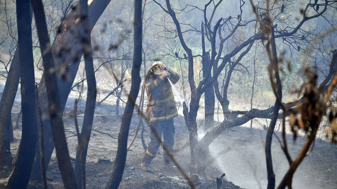 A firefighter works in Dargan, 130 kilometres northwest of Sydney