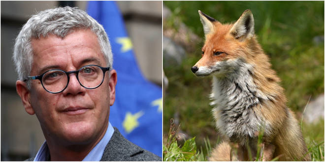 Top barrister tweeted that he had killed a fox