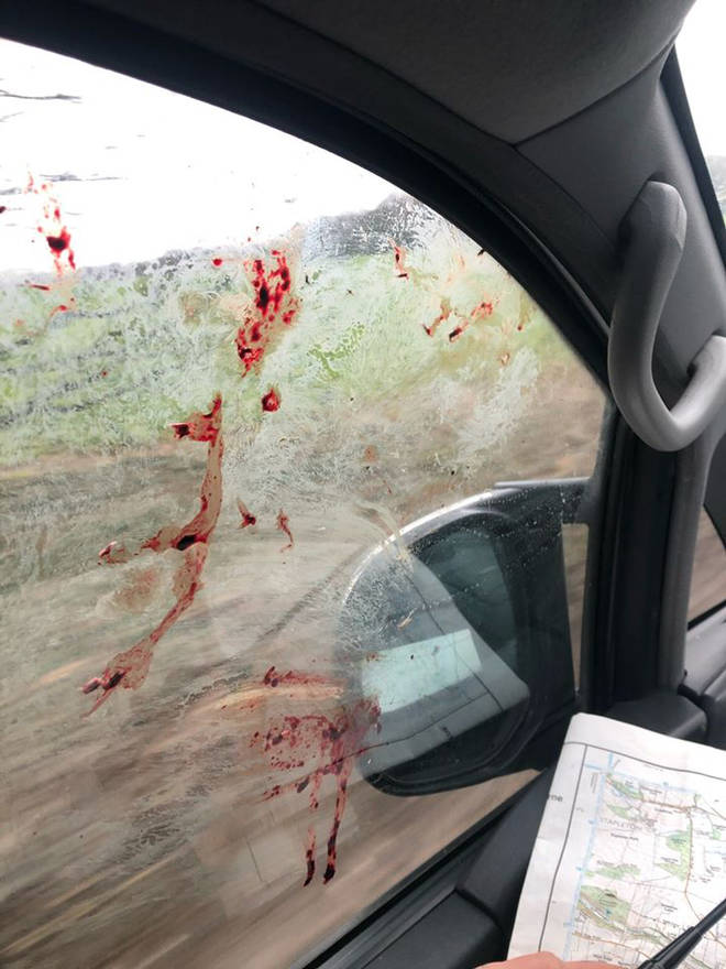 Blood is shown on the outside of the window