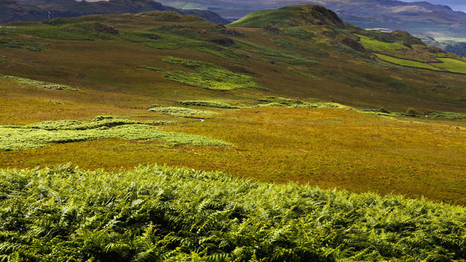 The hills of Western Lake District, Cumbria