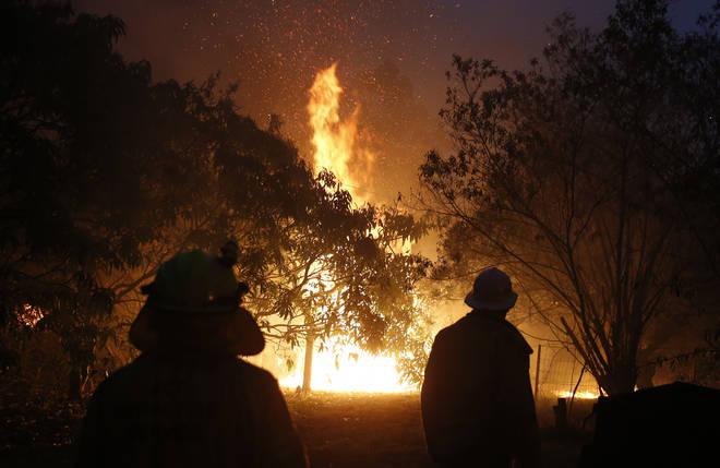 Fires have been raging across Australia