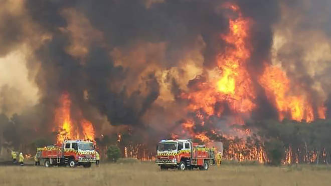 Australia's Rural Fire Service is fighting to contain dozens of huge blazes