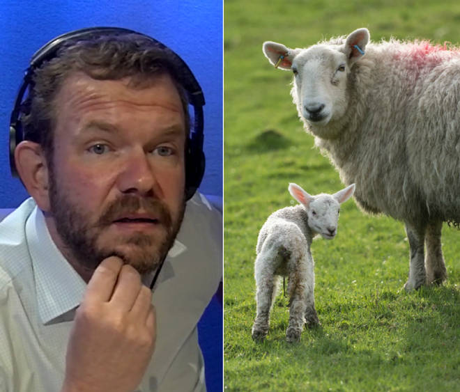 James O'Brien was schooled on Brexit by a farmer from Devon