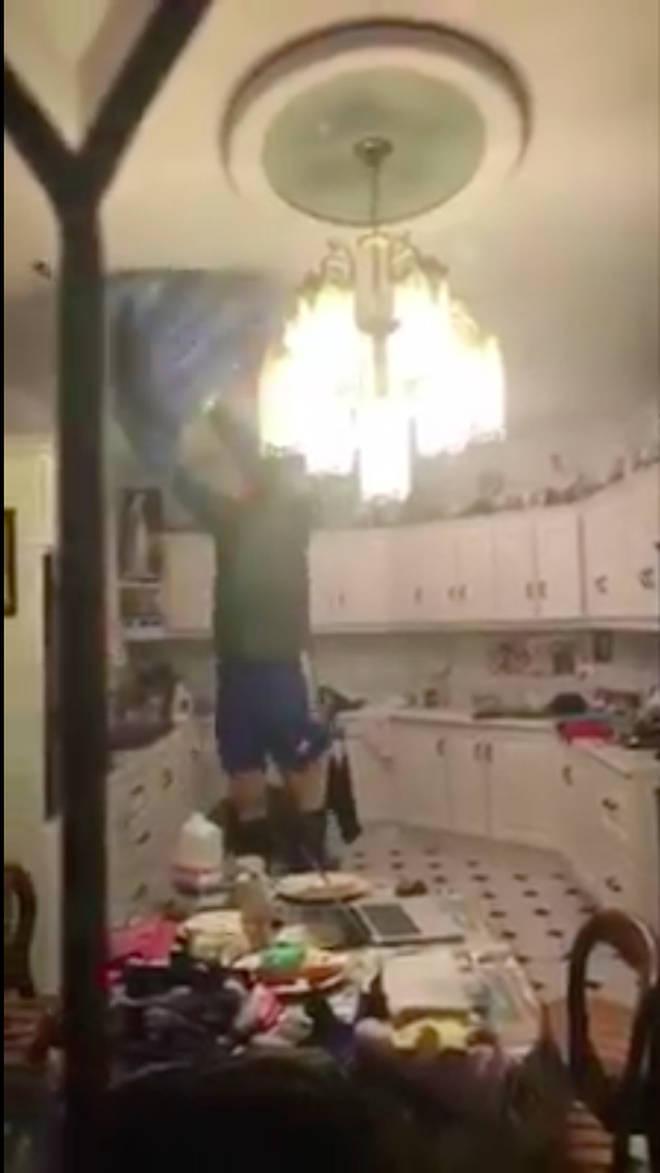 Irish family attempt to capture bat in their kitchen