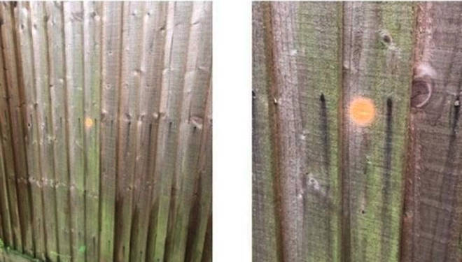 The criminals marked the fence with orange dots