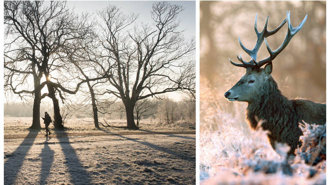 Britain is set to be blanketed in frost across the weekend