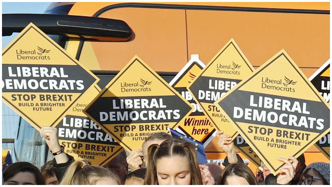 The Liberal Democrats will announce their new leader in July