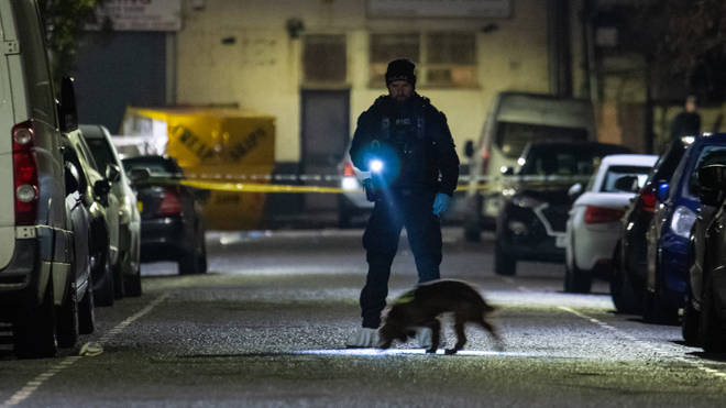 A police sniffer dog at the scene of the triple murder in east London
