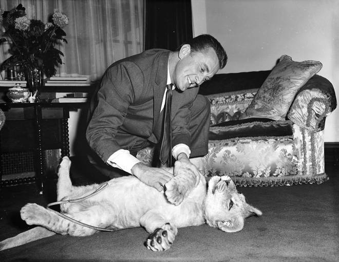 Kirk Douglas with a lion cub called Spartacus which was presented to him by the director of Southport zoo in appreciation of Douglas' film role