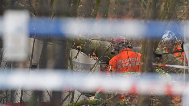 A dog walker has died after being hit by a falling tree