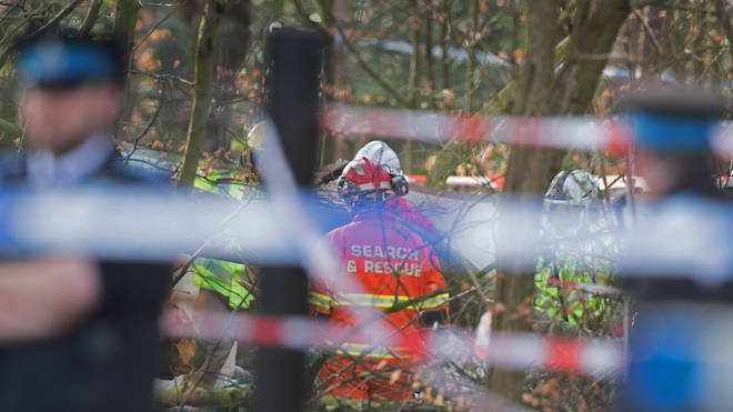 The man was aged in his sixties and was hit by a falling tree