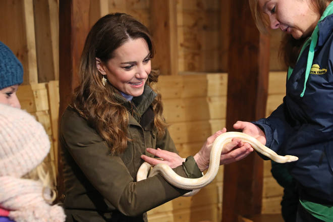 Kate handled a corn snake during the trip
