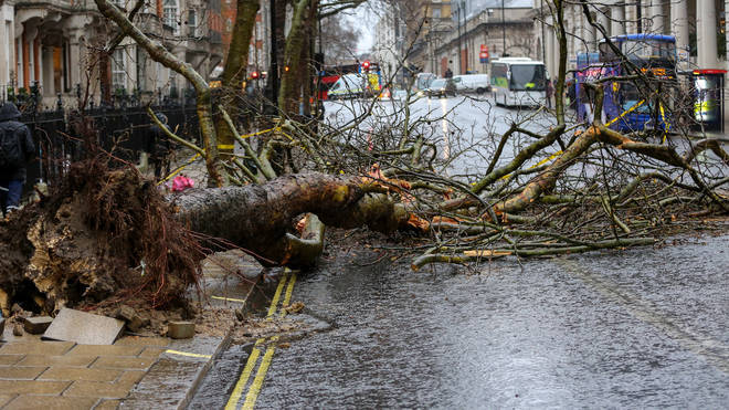 Storm Ciara brought heavy winds and rains