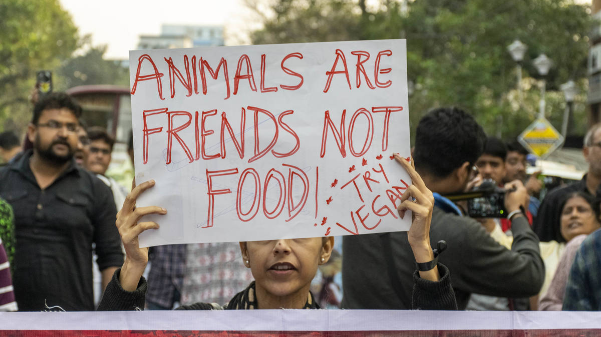 """Caller recounts violent story and brands animal rights activists as """"terrorist"""""""