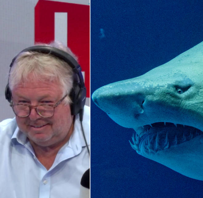 Nick Ferrari had a very entertaining shark discussion
