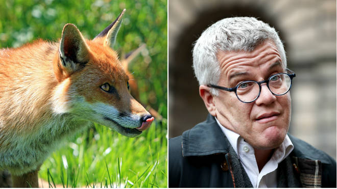Jolyon Maugham tweeted about killing the fox