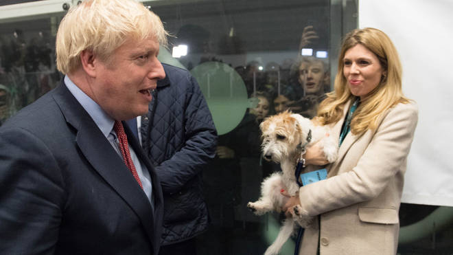 Boris Johnson and Carrie Symonds rescued Dilyn in 2019