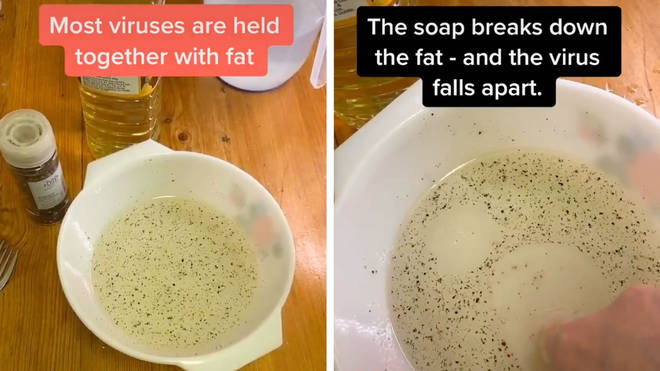 This experiment cleverly shows how soap protects you from coronavirus