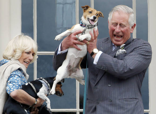 Both dogs were rescued by Battersea Dogs and Cats Home, of which Camilla is royal patron.