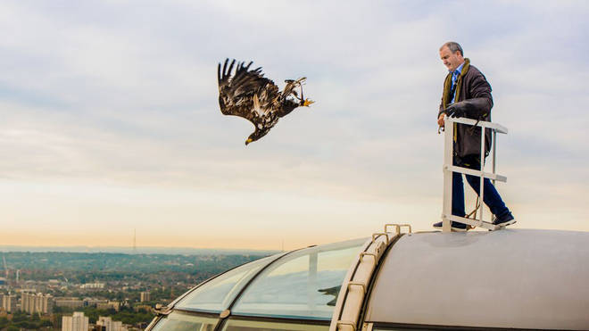 The moment an eagle was released from the top of the Coca-Cola London Eye