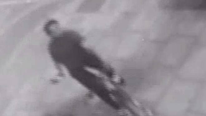 Police hunting a cyclist who attacked three people