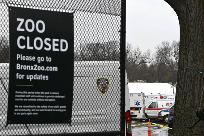 A zoo in the Bronx was closed due to coronavirus