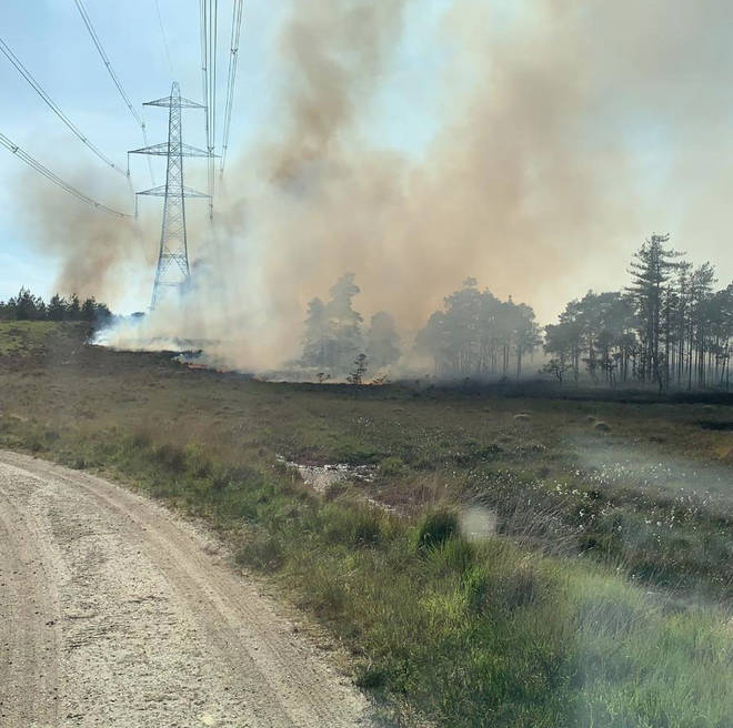 The fire has covered 100 hectares