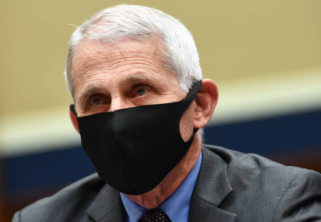 Dr Anthony Fauci is the US government's top infectious disease expert