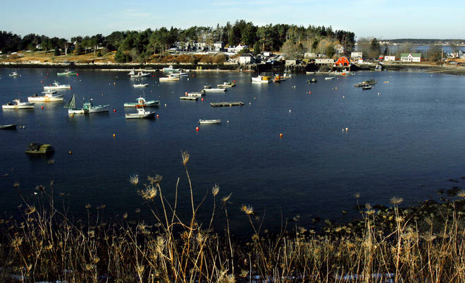 File photo: Julie Dimperio Holowach was killed while swimming off Bailey Island, Maine