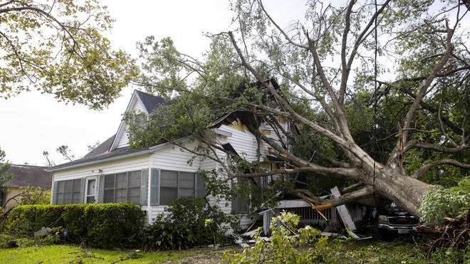 A tree rests on a house on West Orange Avenue in Orange, Texas the morning after Hurricane Laura made landfall
