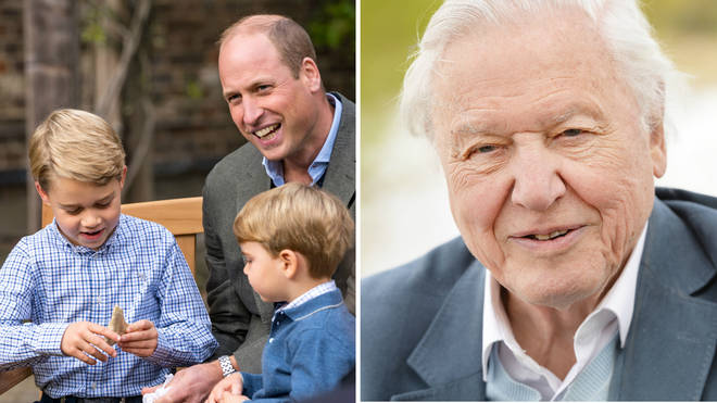Prince George was pictured handling the fossilised tooth from an Carcharocles megalodon