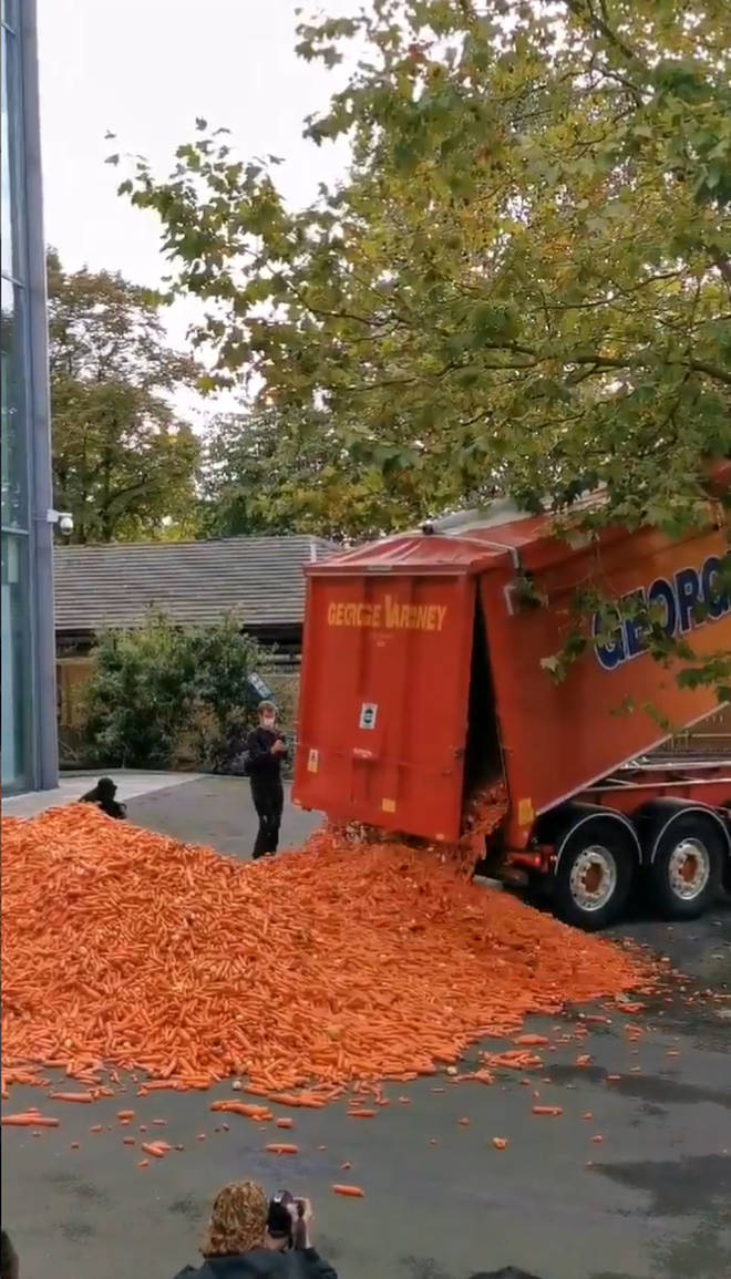 An orange lorry dumped the carrots in front of the college building on Tuesday