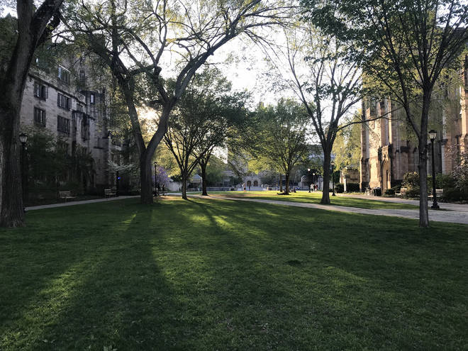 Yale University in the US came under fire for alleged racial bias