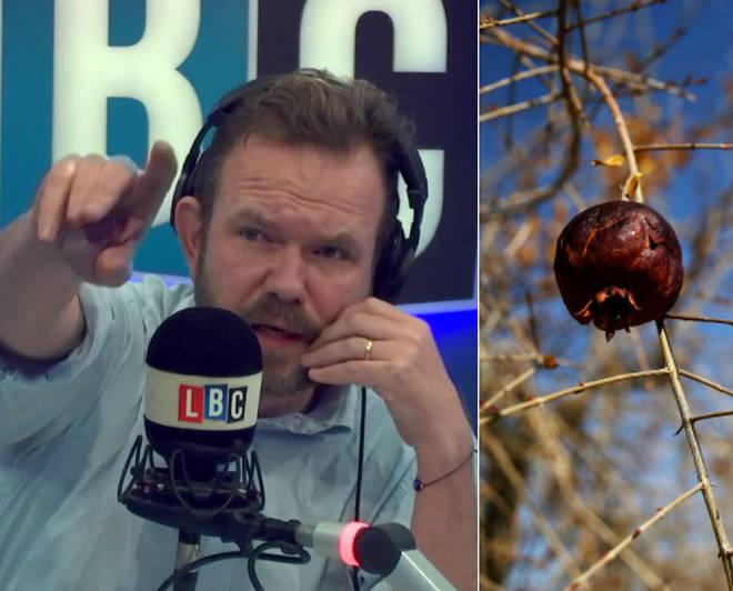 James O'Brien had a few facts for this caller