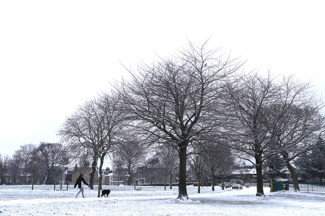 A woman walks a dog in the snow around Peel Park, Bradford