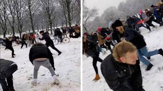 Covid snowball fight