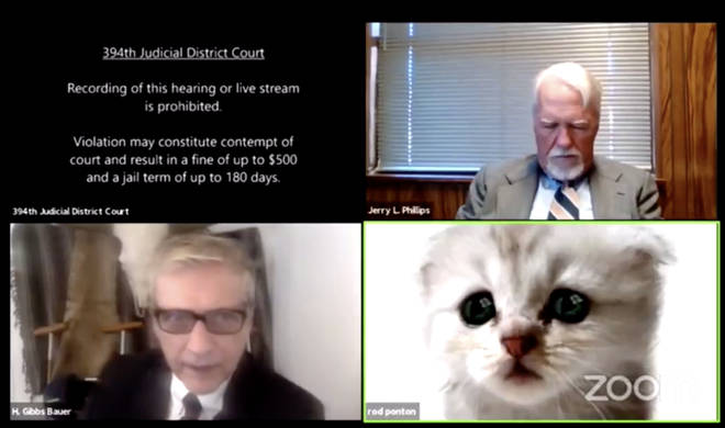 a Zoom court hearing went awry when one of the lawyers could not disable a kitten filter