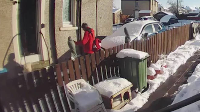 A Royal Mail postman refused to help a vulnerable pensioner lying in snow after a fall