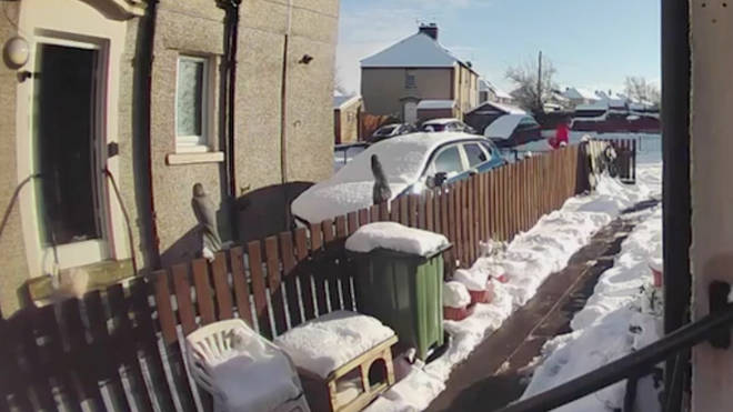 The postie left the elderly woman in the snow to continue his round