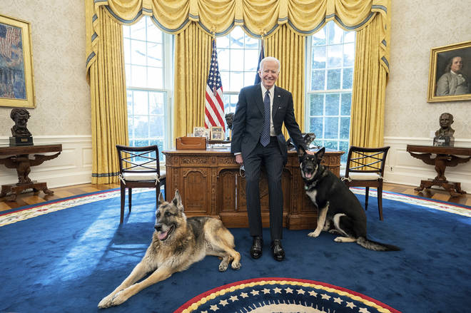 US President Joe Biden pictured in the Oval Office with Major and Champ