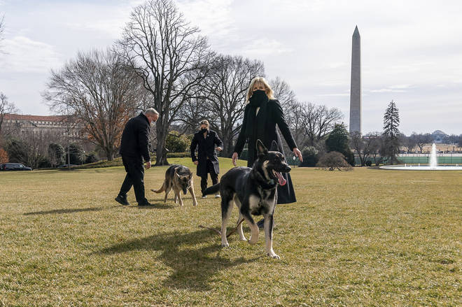 The dogs pictured on the South Lawn of the White House with the President and First Lady