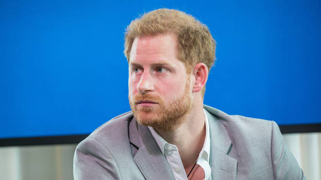 Prince Harry's new job as a commissioner looking at media misinformation is his second appointment in two days.