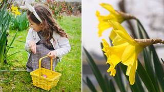 Easter weather forecast: Dry spells set for Bank Holiday weekend