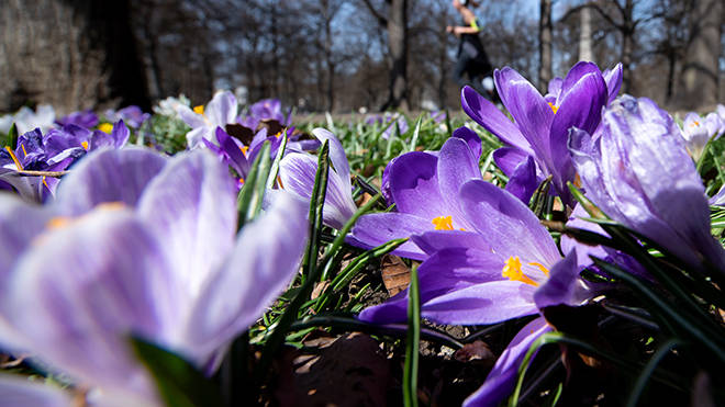 Spring is set to begin with soaring temperatures, the Met office forecasts