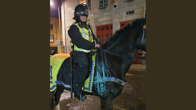 Avon and Somerset Police said one of their horses was covered in paint