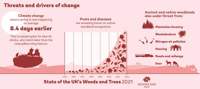 A Woodland Trust infographic showing threats and drivers of change to woodlands