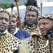 South Africa Zulu King