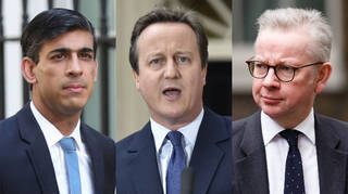 David Cameron's lobbying texts to Rishi Sunak and Michael Gove have been released