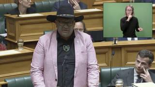 Rawiri Waititi speaks in parliament in Wellington, New Zealand