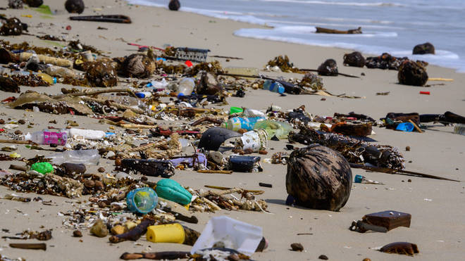 Eight million pieces of plastic are dumped into the world's oceans every day